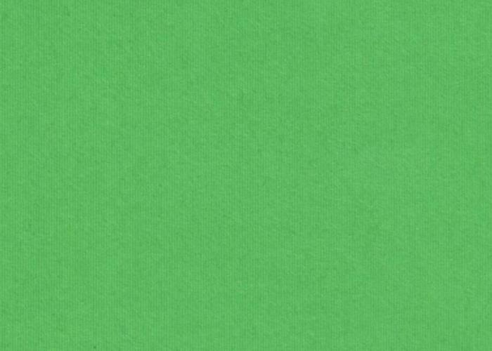 Зеленый - интерьер  - всефото.рф
