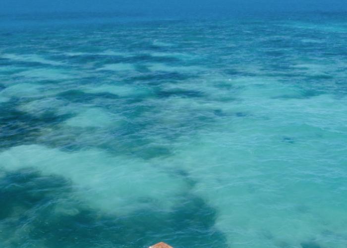 Тихоокеанский - интерьер  - всефото.рф