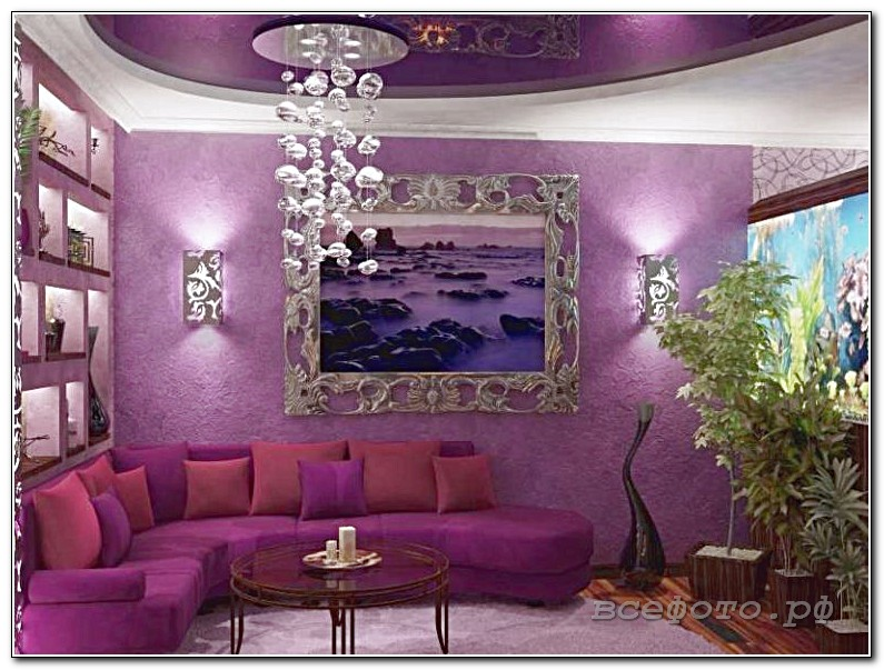 47 768x576 - Фиолетовый