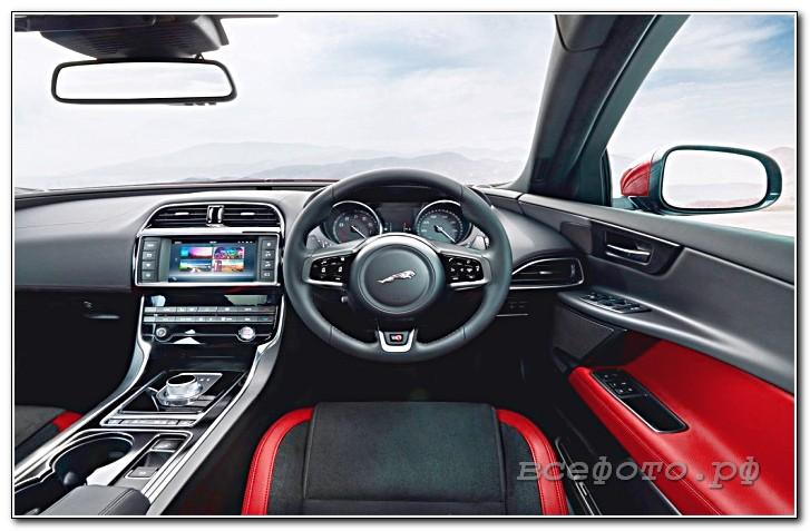 14 - Jaguar