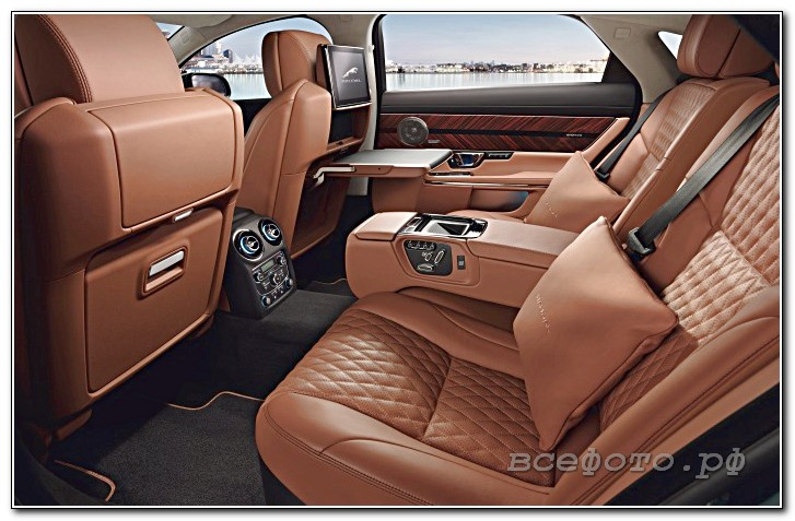 15 - Jaguar