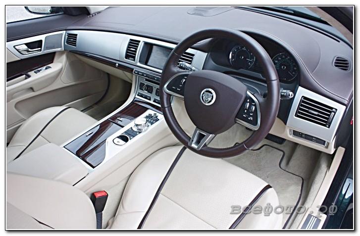 17 - Jaguar