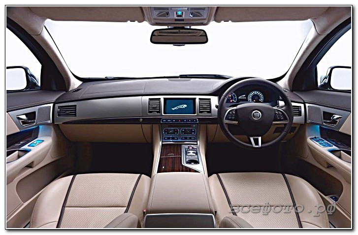 28 - Jaguar