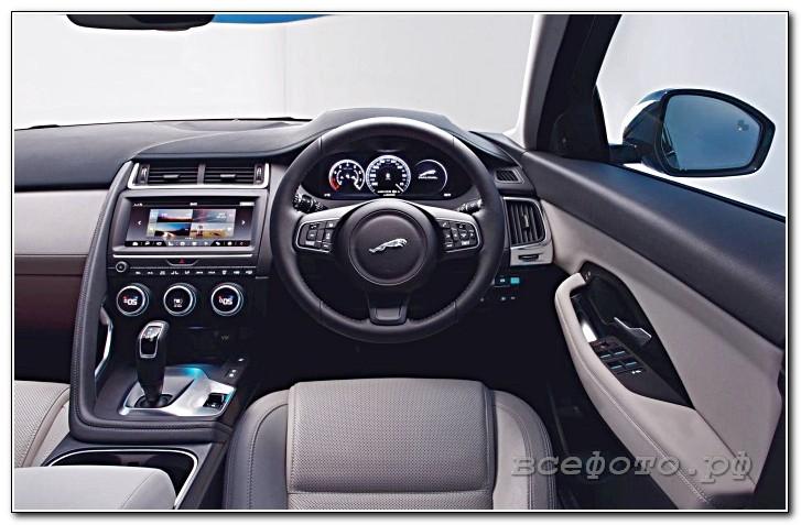 35 - Jaguar