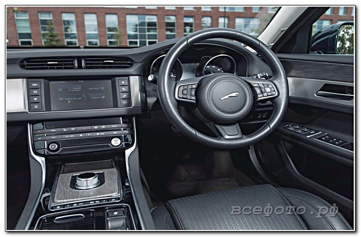 36 - Jaguar