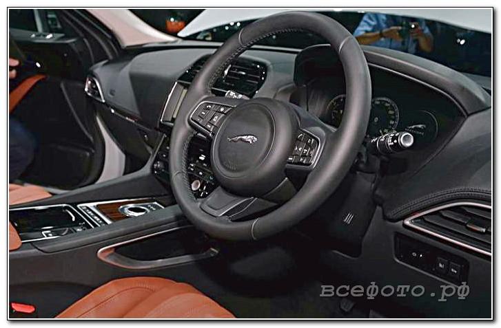 39 - Jaguar
