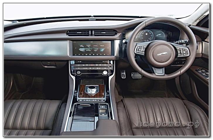 43 - Jaguar