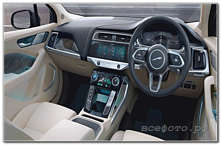 48 - Jaguar