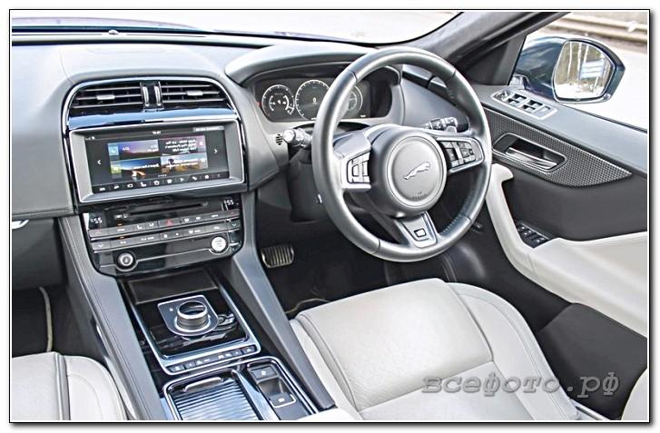 49 - Jaguar