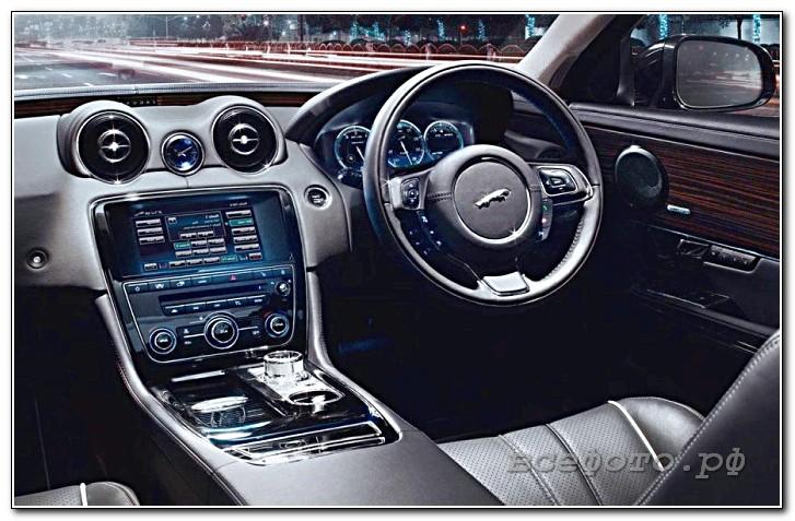 6 - Jaguar