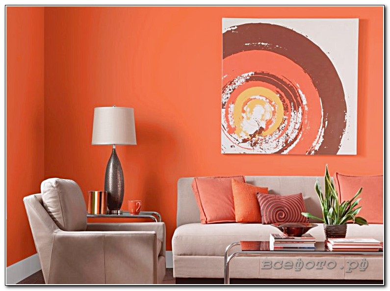 82 768x566 - Оранжевый